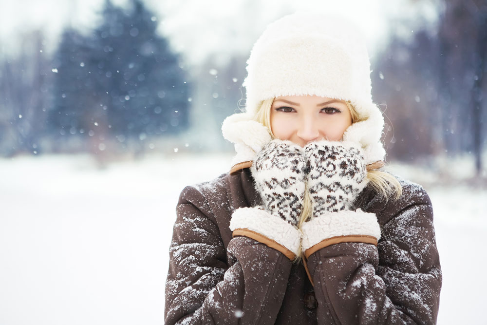 winterize-home-against-pests
