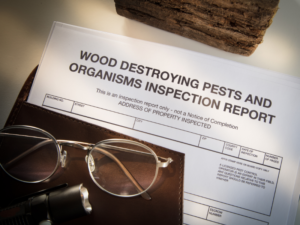 Termite Inspection Buford Termite Letter Buford